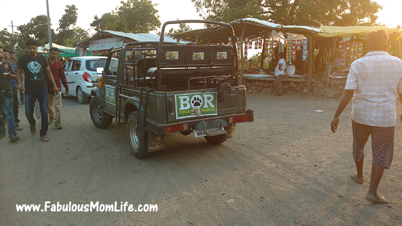 The Bor Jungle Safari Jeep