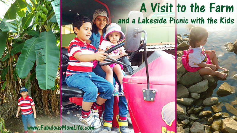 A Visit to the Farm and a Lakeside Picnic with the Kids