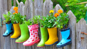 Creating Your Own Gardening Blog for Fun and Profit